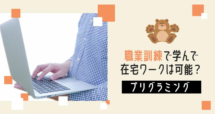 職業訓練でプログラミングを学んで在宅で仕事は可能なの?